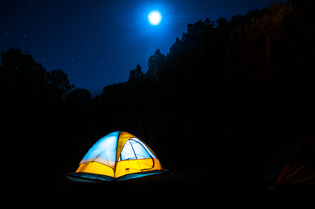 Camping In The Backyard Safe : Camping In Your Yard? Keep These Fire Safety Tips in Mind  Michigan